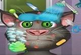 لعبة تشييك القط المتحدث على الموضة