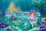 لعبة تنظيف قاع المحيط مع اريل