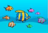 لعبة ربط زوج الاسماك